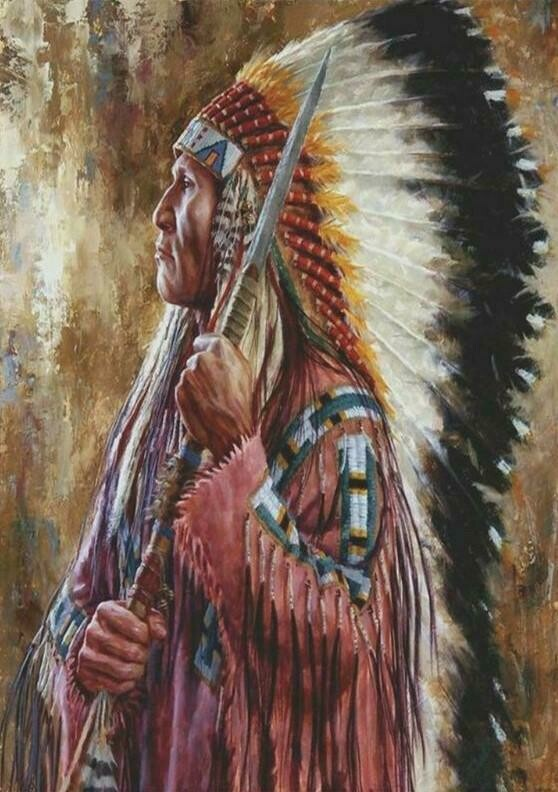 Native American 04 - Full Drill Diamond Painting - Specially ordered for you. Delivery is approximately 4 - 6 weeks.