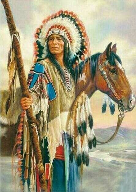 Native American 14 - Full Drill Diamond Painting - Specially ordered for you. Delivery is approximately 4 - 6 weeks.