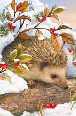 Hedgehog In Snow - Full Drill Diamond Painting - Specially ordered for you. Delivery is approximately 4 - 6 weeks.