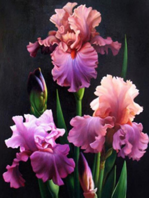 Flowers 11 - Full Drill Diamond Painting - Specially ordered for you. Delivery is approximately 4 - 6 weeks.