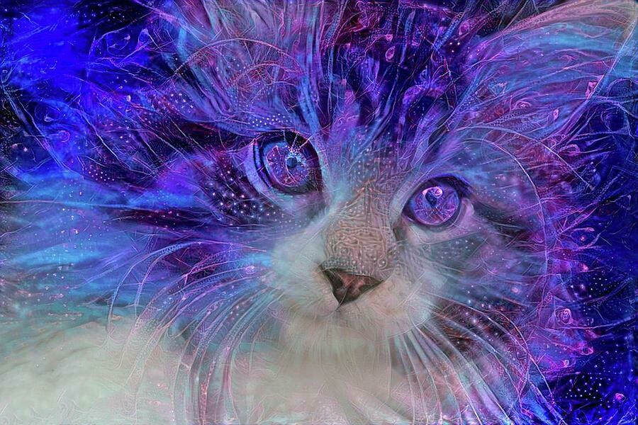 Purple Kitten - Full Drill Diamond Painting - Specially ordered for you. Delivery is approximately 4 - 6 weeks.