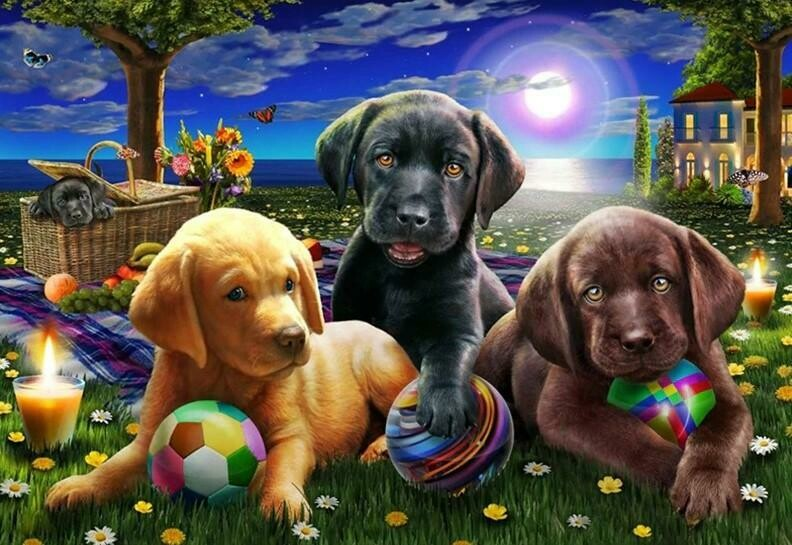 Puppies in the Park - Full Drill Diamond Painting - Specially ordered for you. Delivery is approximately 4 - 6 weeks.