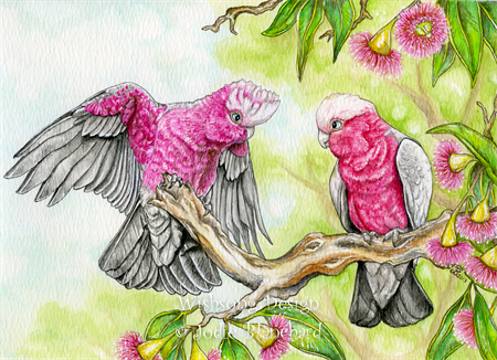Pink and Grey Galahs 02 - Full Drill Diamond Painting - Specially ordered for you. Delivery is approximately 4 - 6 weeks.