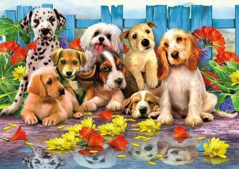 Puppies - Full Drill Diamond Painting - Specially ordered for you. Delivery is approximately 4 - 6 weeks.