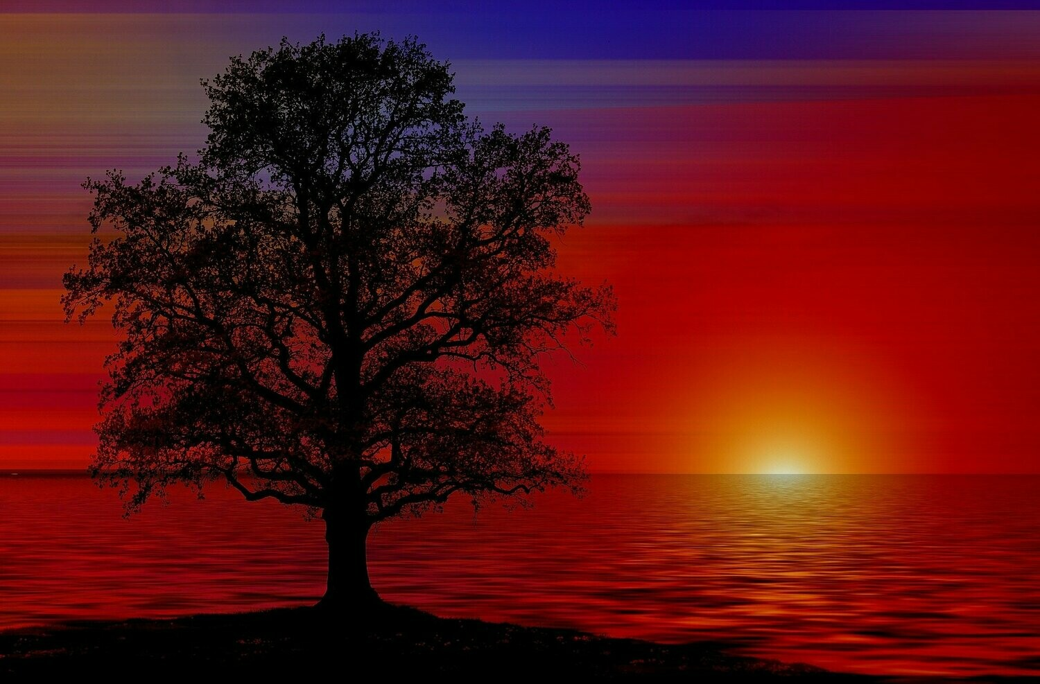 Red Sunset Tree - Full Drill Diamond Painting - Specially ordered for you. Delivery is approximately 4 - 6 weeks.