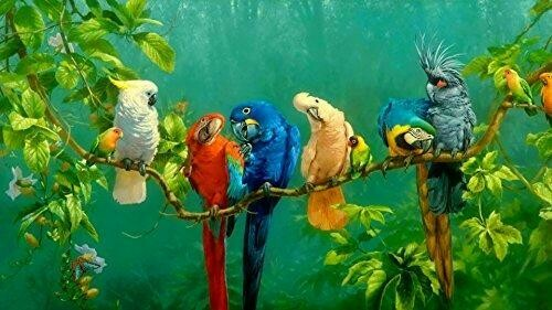 Assorted Parrots - Full Drill Diamond Painting - Specially ordered for you. Delivery is approximately 4 - 6 weeks.