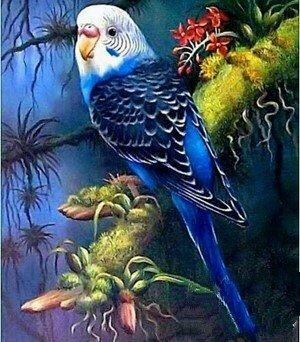 Budgie - Full Drill Diamond Painting - Specially ordered for you. Delivery is approximately 4 - 6 weeks.