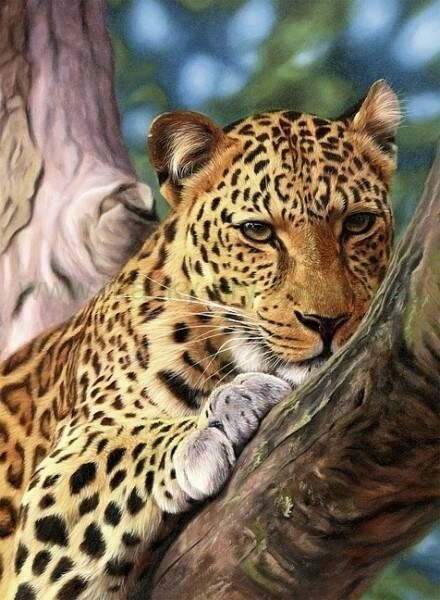 Cheetah in a Tree - Full Drill Diamond Painting - Specially ordered for you. Delivery is approximately 4 - 6 weeks.