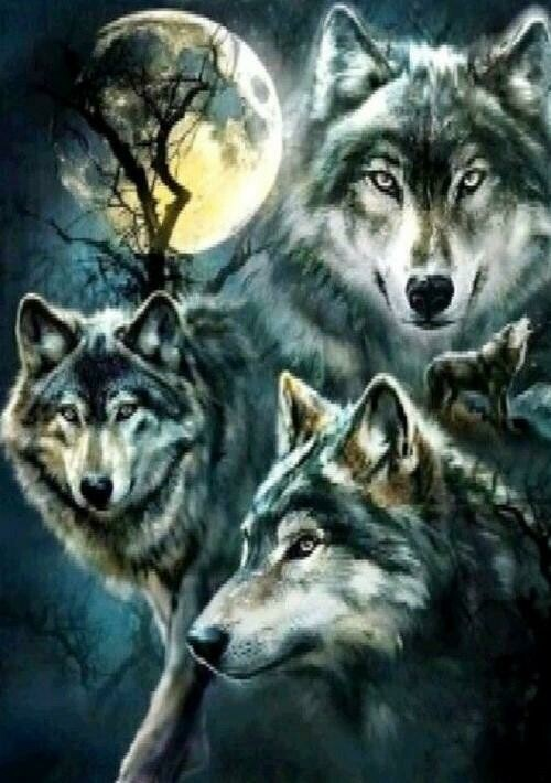 Trio of Wolves - Full Drill Diamond Painting - Specially ordered for you. Delivery is approximately 4 - 6 weeks.