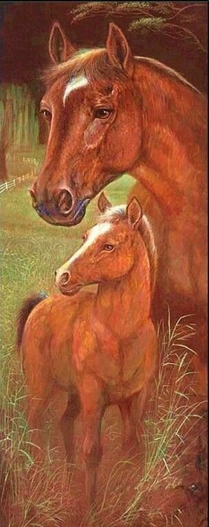 Wild Mothers Horse - Full Drill Diamond Painting - Specially ordered for you. Delivery is approximately 4 - 6 weeks.