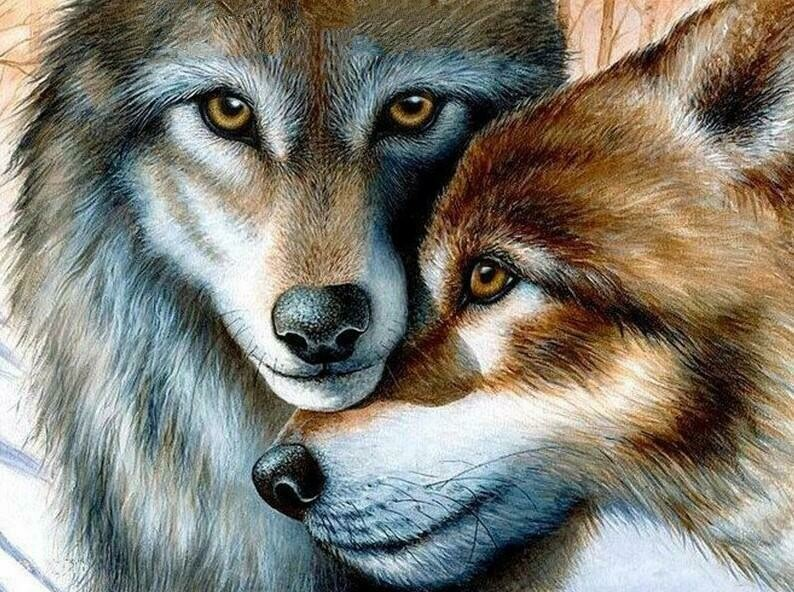 Wolf Nuzzle - Full Drill Diamond Painting - Specially ordered for you. Delivery is approximately 4 - 6 weeks.