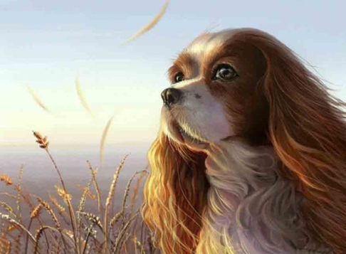 Thoughtful Puppy - Full Drill Diamond Painting - Specially ordered for you. Delivery is approximately 4 - 6 weeks.