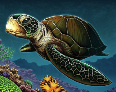 Turtle in water - Full Drill Diamond Painting - Specially ordered for you. Delivery is approximately 4 - 6 weeks.