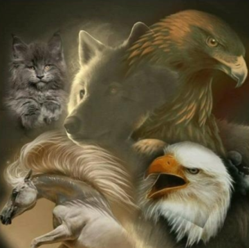 Animals 011 - Full Drill Diamond Painting - Specially ordered for you. Delivery is approximately 4 - 6 weeks.