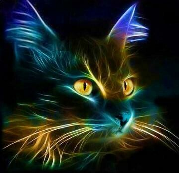 Black Cat 2 - Full Drill Diamond Painting - Specially ordered for you. Delivery is approximately 4 - 6 weeks.