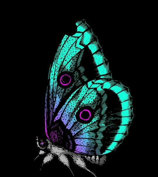 Black Background Butterfly- Full Drill Diamond Painting - Specially ordered for you. Delivery is approximately 4 - 6 weeks.