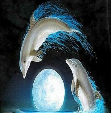 Dolphins 3 - Full Drill Diamond Painting - Specially ordered for you. Delivery is approximately 4 - 6 weeks.