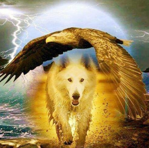 Eagle And Wolf  - Full Drill Diamond Painting - Specially ordered for you. Delivery is approximately 4 - 6 weeks.