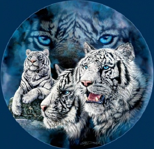 Four Tigers - Full Drill Diamond Painting - Specially ordered for you. Delivery is approximately 4 - 6 weeks.
