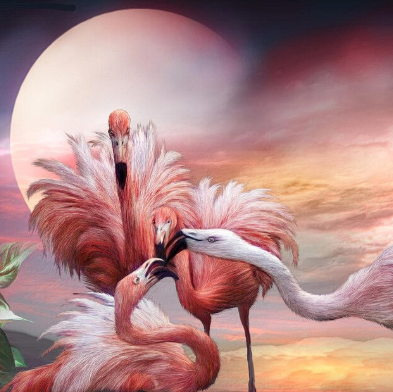 Flamingos - Full Drill Diamond Painting - Specially ordered for you. Delivery is approximately 4 - 6 weeks.
