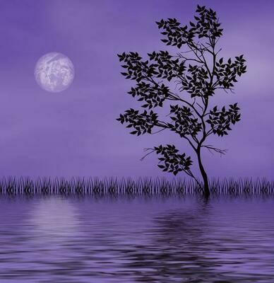 Purple Scenery - Full Drill Diamond Painting - Specially ordered for you. Delivery is approximately 4 - 6 weeks.
