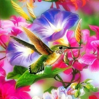 Hummingbird 02 - Full Drill Diamond Painting - Specially ordered for you. Delivery is approximately 4 - 6 weeks.