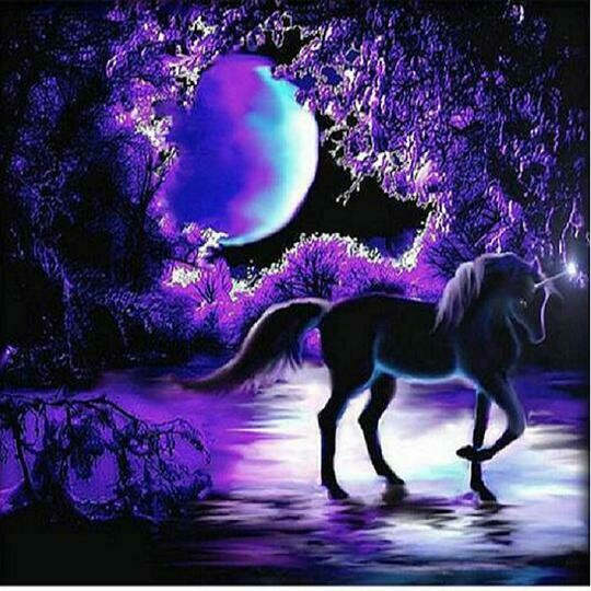 Midnight Unicorn- Full Drill Diamond Painting - Specially ordered for you. Delivery is approximately 4 - 6 weeks.
