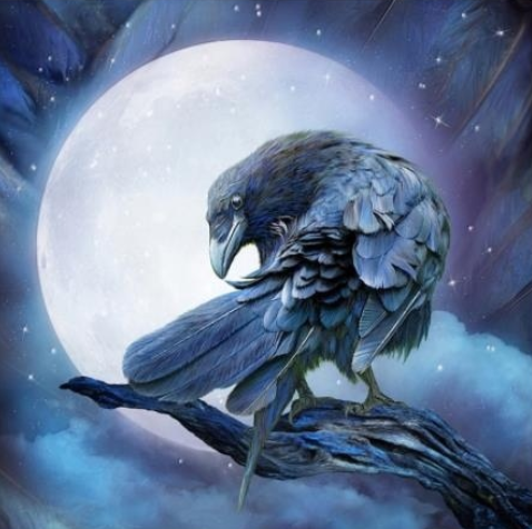 Moonlight Crow - Full Drill Diamond Painting - Specially ordered for you. Delivery is approximately 4 - 6 weeks.