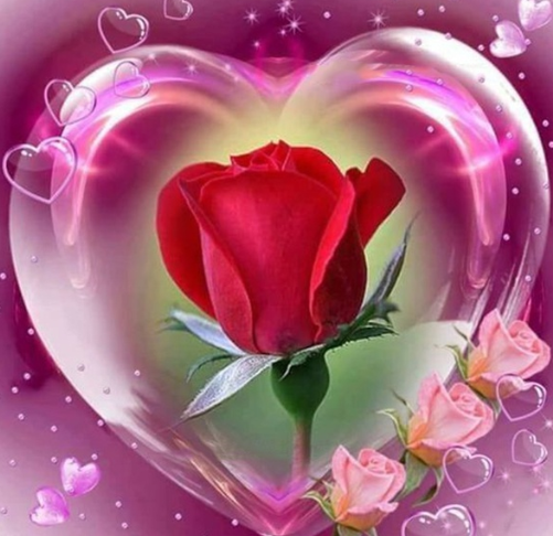 Roses In Heart- Full Drill Diamond Painting - Specially ordered for you. Delivery is approximately 4 - 6 weeks.