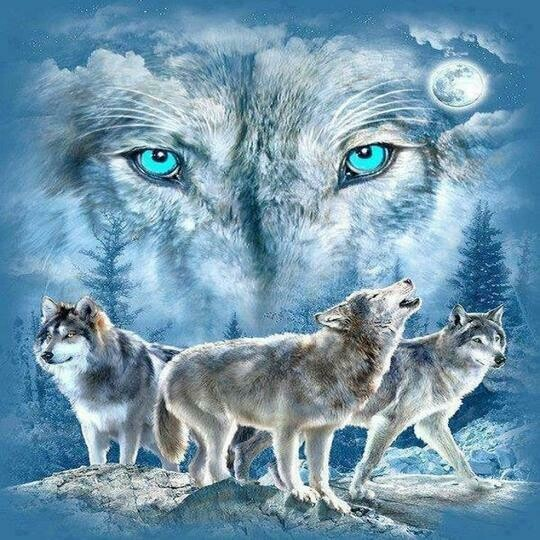 Wolves - Full Drill Diamond Painting - Specially ordered for you. Delivery is approximately 4 - 6 weeks.