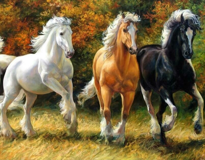 3 Horses - 50 x 70cm - Full Drill (Square), Diamond Painting Kit - Currently in stock
