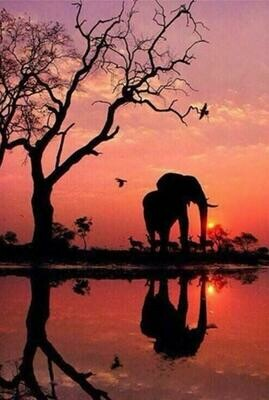 Elephant Sunset - 61 x 91.5cm (poster size) Full Drill (Round) Diamond Painting Kit - Currently in stock
