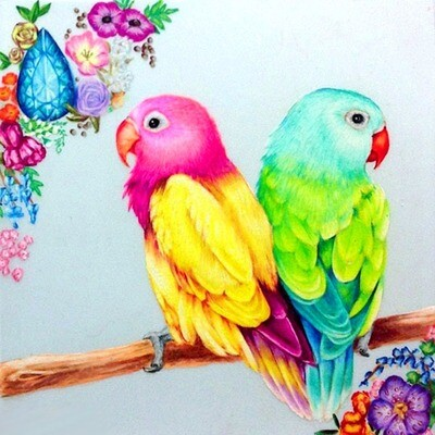 Two Pretty Birds - 30 x 30cm Full Drill (Round) Diamond Painting Kit - Currently in stock