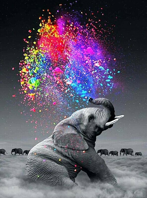 Elephant Squirting Colours - 40 x 50cm Full Drill (Square), Diamond Painting Kit - Currently in stock