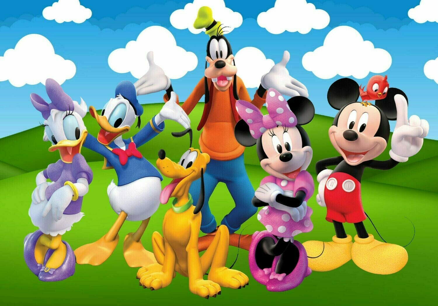 Disney Crew - 50 x 70cm - Full Drill (Square), Diamond Painting Kit - Currently in stock