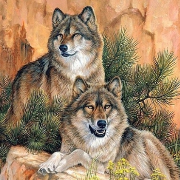 Two Wolves - 50 x 50cm Full Drill (Square), Diamond Painting Kit - Currently in stock