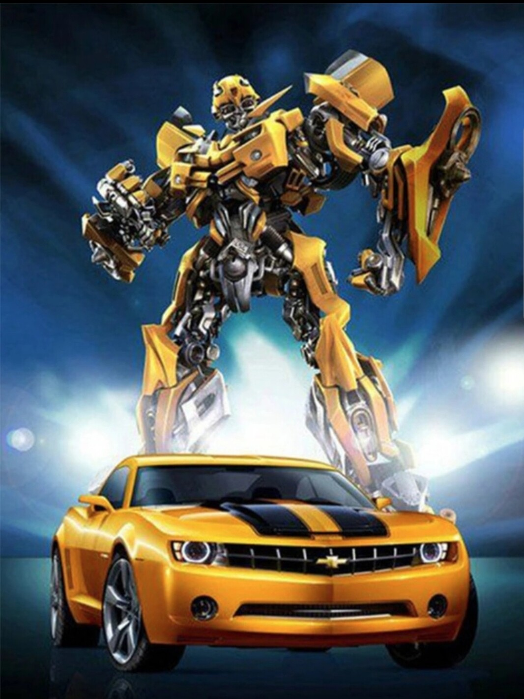 Bumblebee - 40 x 50cm Full Drill (Round), Diamond Painting Kit - Currently in stock