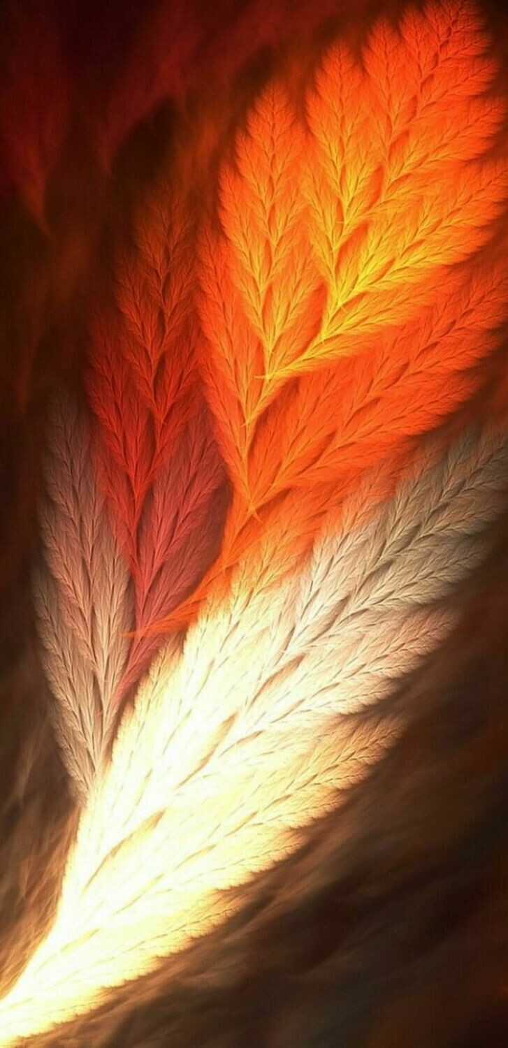 Feather Orange- Full Drill Diamond Painting - Specially ordered for you. Delivery is approximately 4 - 6 weeks.