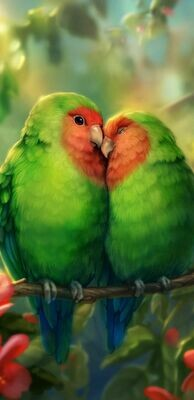 Green Orange Love Birds- Full Drill Diamond Painting - Specially ordered for you. Delivery is approximately 4 - 6 weeks.