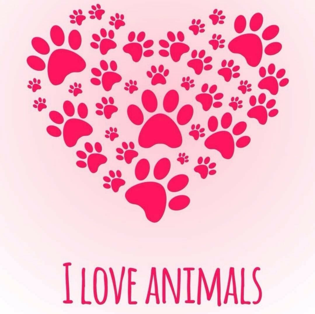 I Love Animal Paws- Full Drill Diamond Painting - Specially ordered for you. Delivery is approximately 4 - 6 weeks.