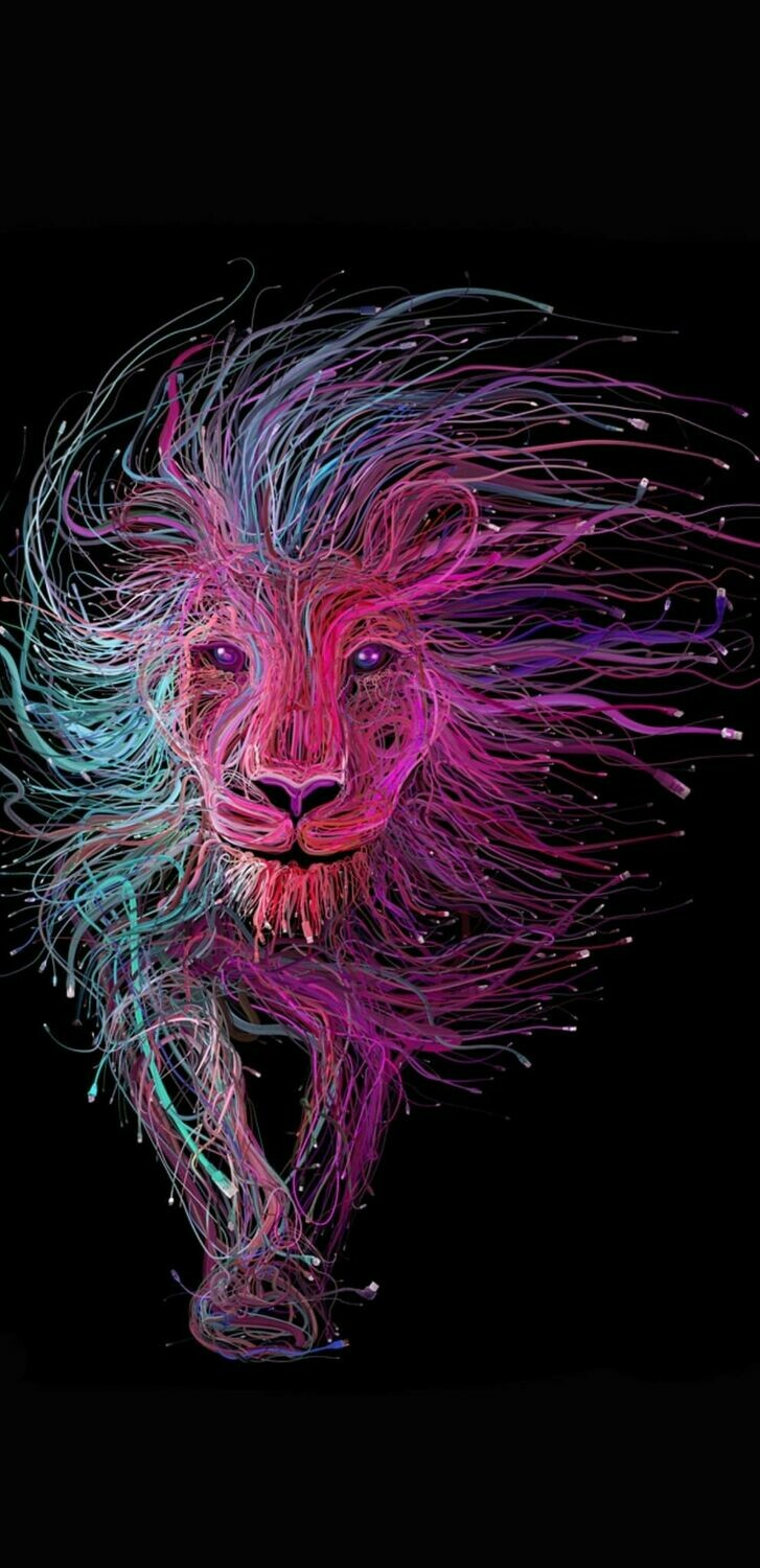 Firework Lion - Full Drill Diamond Painting - Specially ordered for you. Delivery is approximately 4 - 6 weeks.