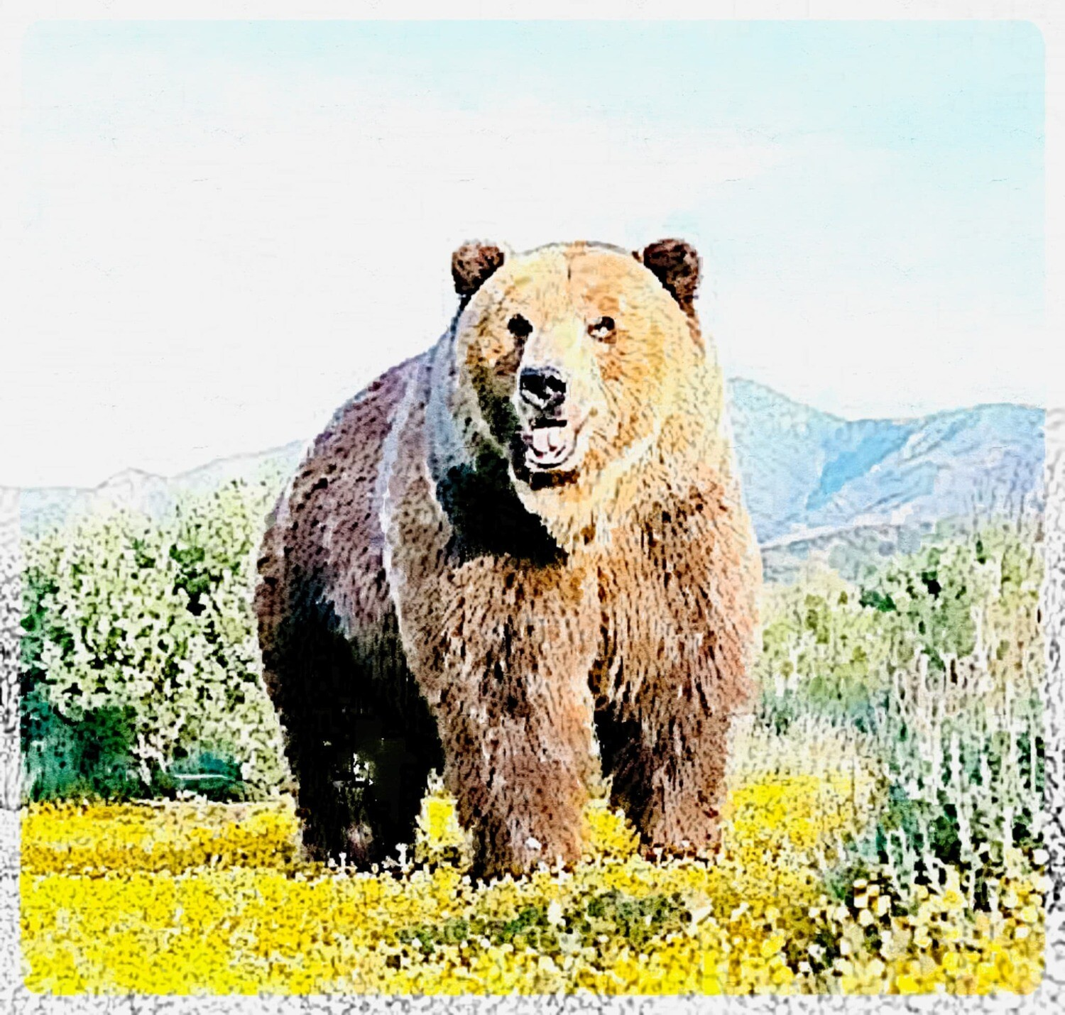 Watercolour bear - Full Drill Diamond Painting - Specially ordered for you. Delivery is approximately 4 - 6 weeks.