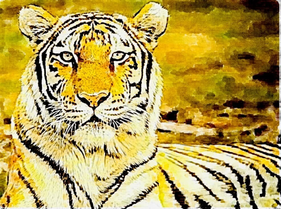 Watercolour Tiger- Full Drill Diamond Painting - Specially ordered for you. Delivery is approximately 4 - 6 weeks.