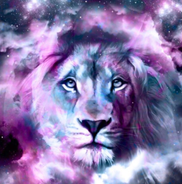 Lion 05 - 50 x 50cm Full Drill (Round), Diamond Painting Kit - Currently in stock