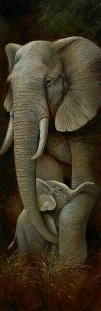 Wild Mothers Elephant - 30 x 75cm - Full Drill (Square), Diamond Painting Kit - Currently in stock