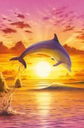 Dolphins 07 - 30 x 40cm Full Drill (Round) Diamond Painting Kit - Currently in stock