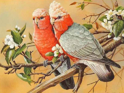 Birds 15 - 50 x 70cm - Full Drill (Square), Diamond Painting Kit - Currently in stock