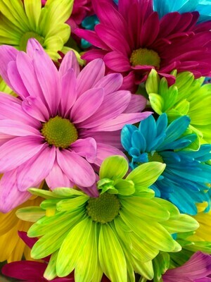 Colourful Bloom Close Up - 50 x 70cm - Full Drill (Square), Diamond Painting Kit - Currently in stock