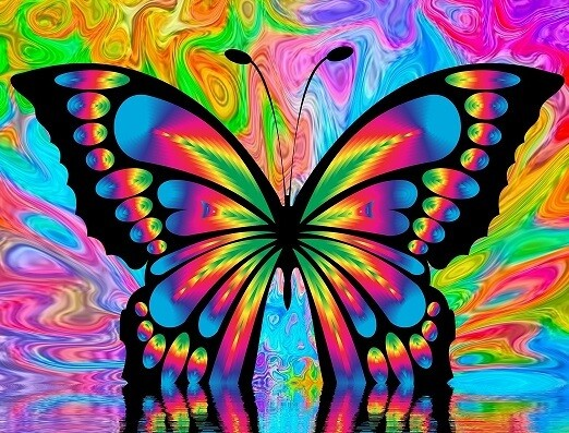 Colourful Butterfly - 30 x 40cm Full Drill (Round) Diamond Painting Kit - Currently in stock