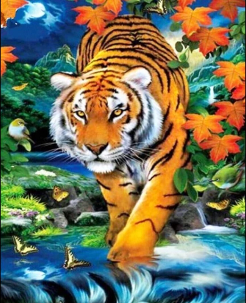 Tiger - 40 x 50cm Full Drill (Square), Diamond Painting Kit - Currently in stock